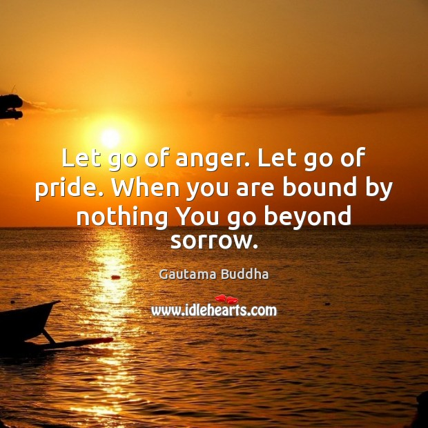 Let go of anger. Let go of pride. When you are bound by nothing You go beyond sorrow. Image