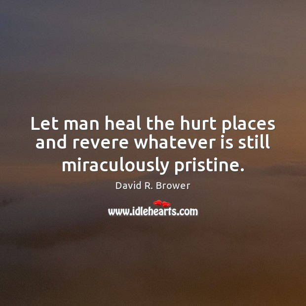 Let man heal the hurt places and revere whatever is still miraculously pristine. Heal Quotes Image