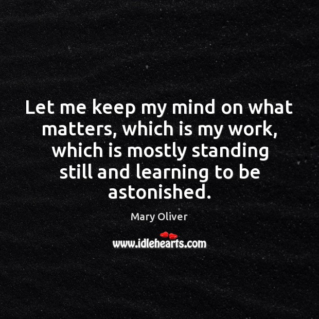 Let me keep my mind on what matters, which is my work, Mary Oliver Picture Quote
