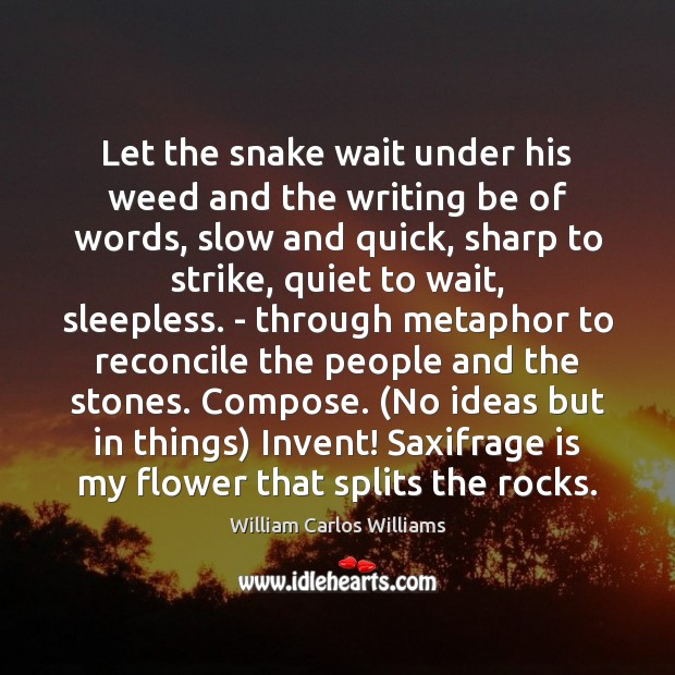 Let the snake wait under his weed and the writing be of William Carlos Williams Picture Quote