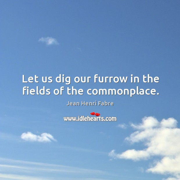 Let us dig our furrow in the fields of the commonplace. Image