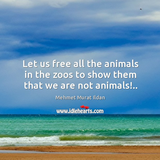 Image, Let us free all the animals in the zoos to show them that we are not animals!..