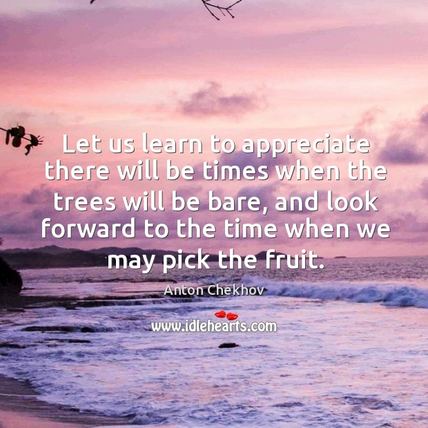 Let us learn to appreciate there will be times when the trees will be bare Image