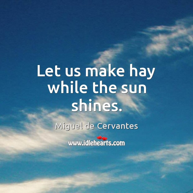Let us make hay while the sun shines. Miguel de Cervantes Picture Quote