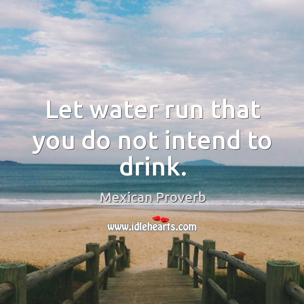 Let water run that you do not intend to drink. Mexican Proverbs Image