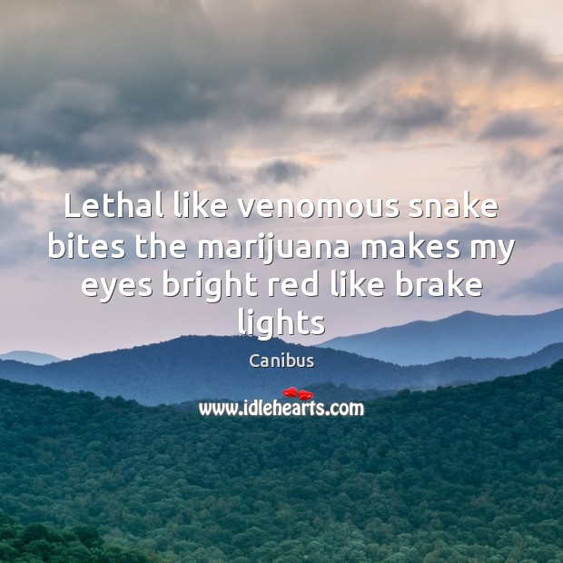 Image, Lethal like venomous snake bites the marijuana makes my eyes bright red like brake lights