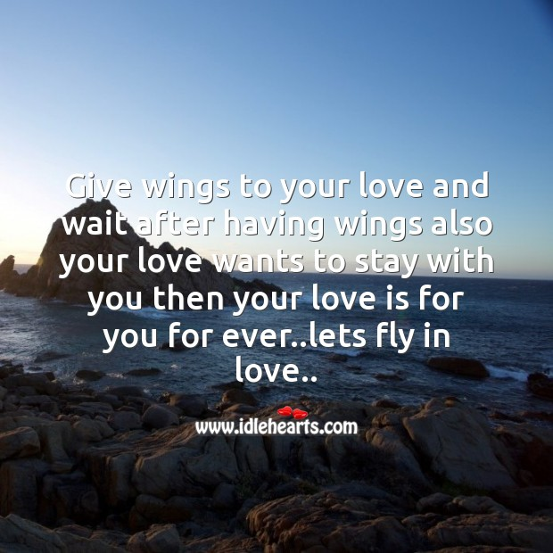 Lets fly in love. Image
