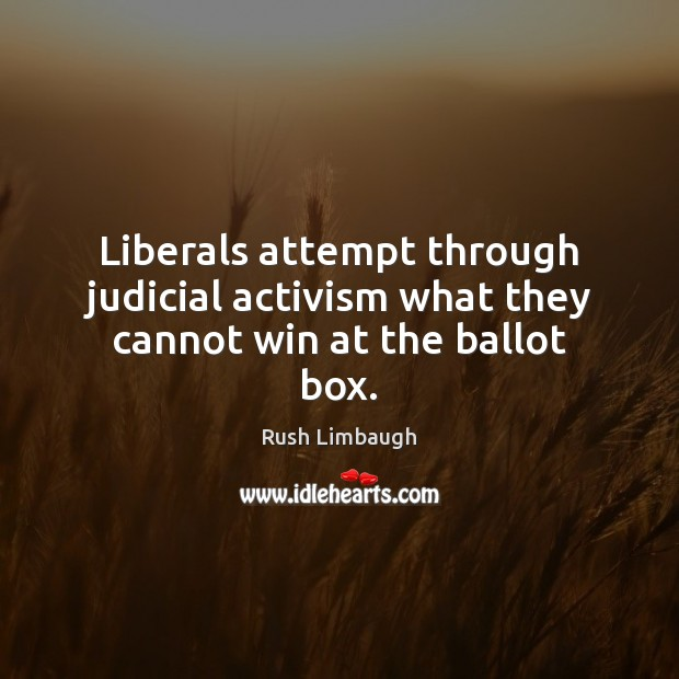 Liberals attempt through judicial activism what they cannot win at the ballot box. Image