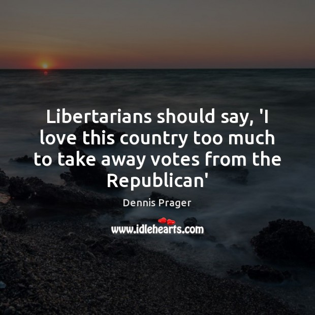 Libertarians should say, 'I love this country too much to take away Image