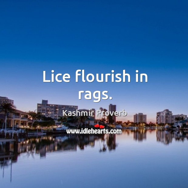 Lice flourish in rags. Kashmir Proverbs Image