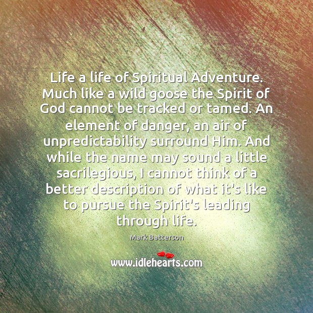 Life a life of Spiritual Adventure. Much like a wild goose the Image