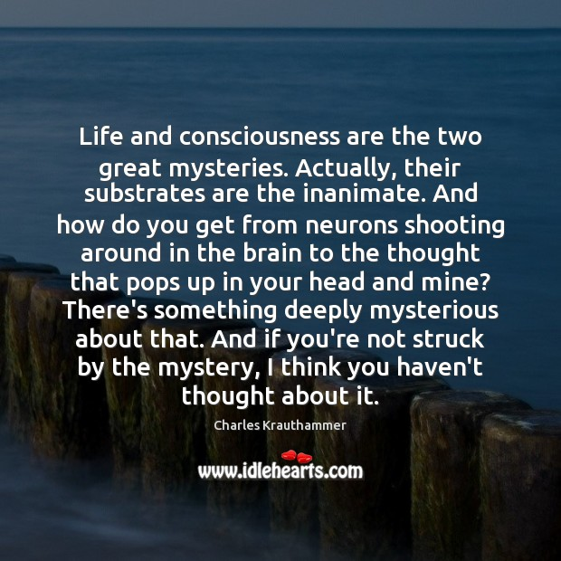 Life and consciousness are the two great mysteries. Actually, their substrates are Image