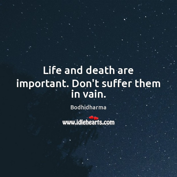 Life and death are important. Don't suffer them in vain. Bodhidharma Picture Quote