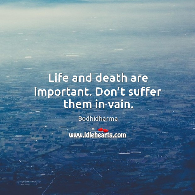 Life and death are important. Don't suffer them in vain. Image