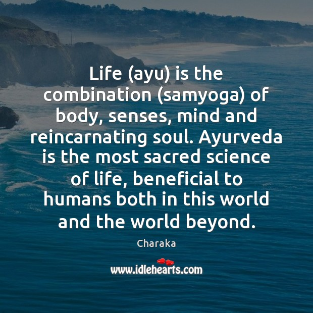Image, Life (ayu) is the combination (samyoga) of body, senses, mind and reincarnating