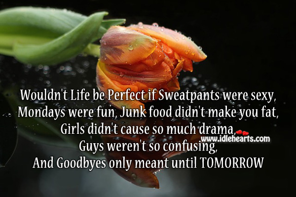 Wouldn't life be perfect if Image