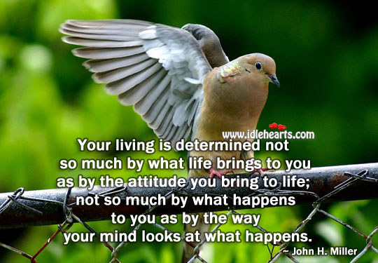 Your living is determined by the attitude Attitude Quotes Image