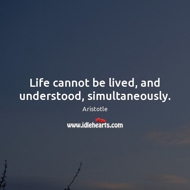 Image, Life cannot be lived, and understood, simultaneously.