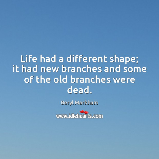 Life had a different shape; it had new branches and some of the old branches were dead. Image
