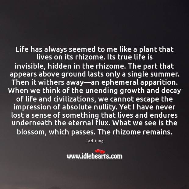 Life has always seemed to me like a plant that lives on Image