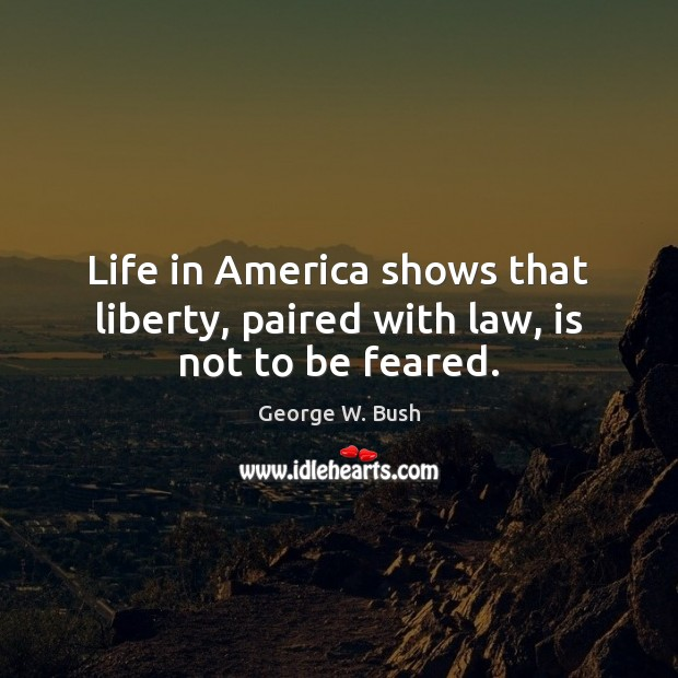 Image, Life in America shows that liberty, paired with law, is not to be feared.