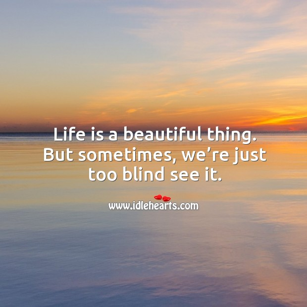 Life is a beautiful thing. But sometimes, we're just too blind see it. Image