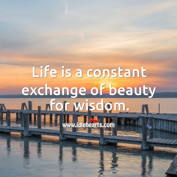 Life is a constant exchange of beauty for wisdom. Image