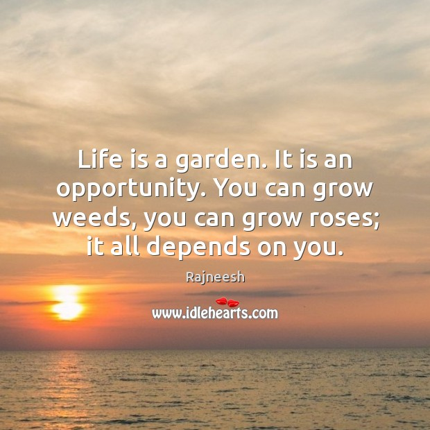 Image, Life is a garden. It is an opportunity. You can grow weeds,