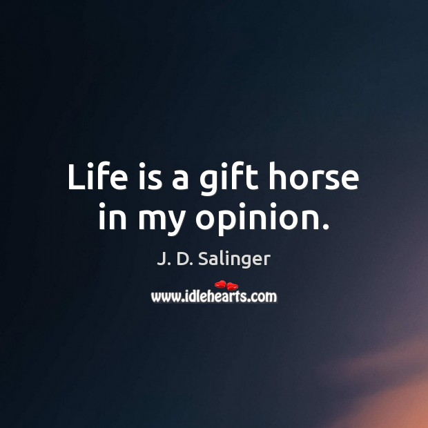 Life is a gift horse in my opinion. Image