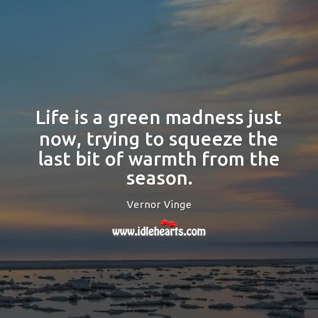 Vernor Vinge Picture Quote image saying: Life is a green madness just now, trying to squeeze the last