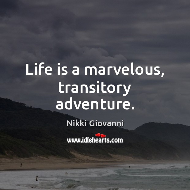 Image, Life is a marvelous, transitory adventure.