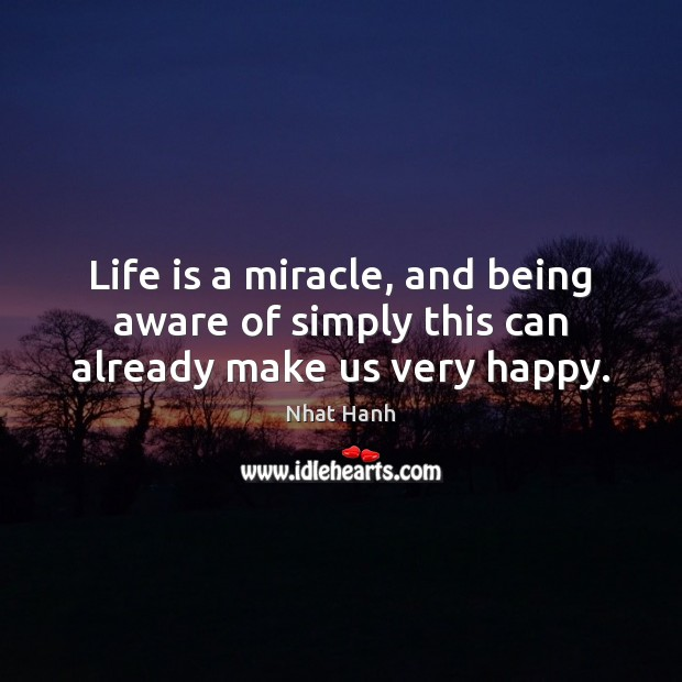 Image, Life is a miracle, and being aware of simply this can already make us very happy.