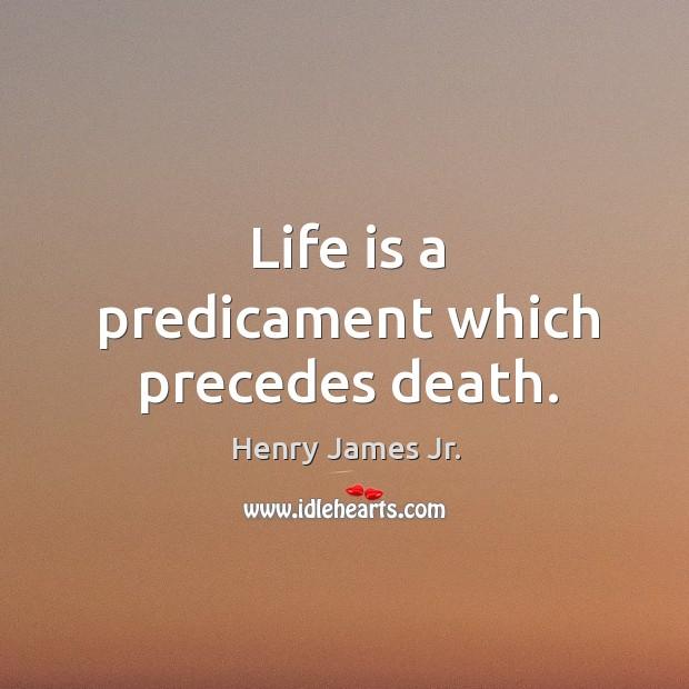 Life is a predicament which precedes death. Image