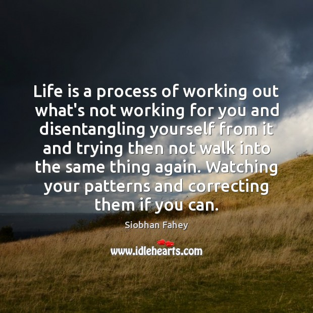 Life is a process of working out what's not working for you Siobhan Fahey Picture Quote