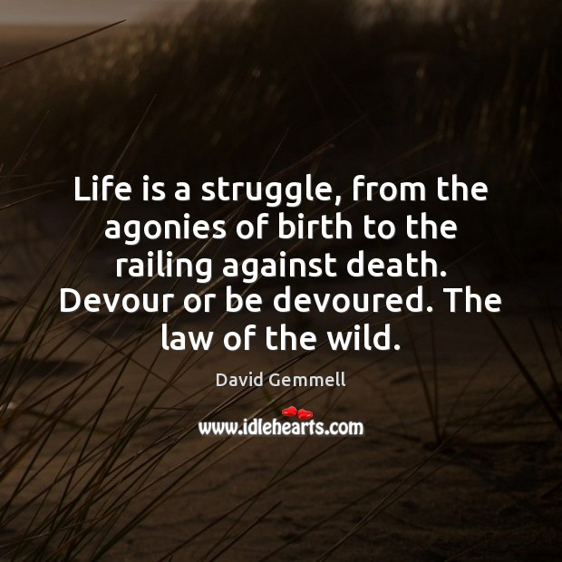 Image, Life is a struggle, from the agonies of birth to the railing