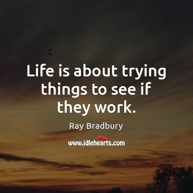 Image, Life is about trying things to see if they work.