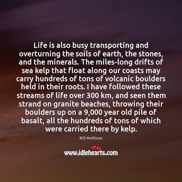 Life is also busy transporting and overturning the soils of earth, the Bill Mollison Picture Quote
