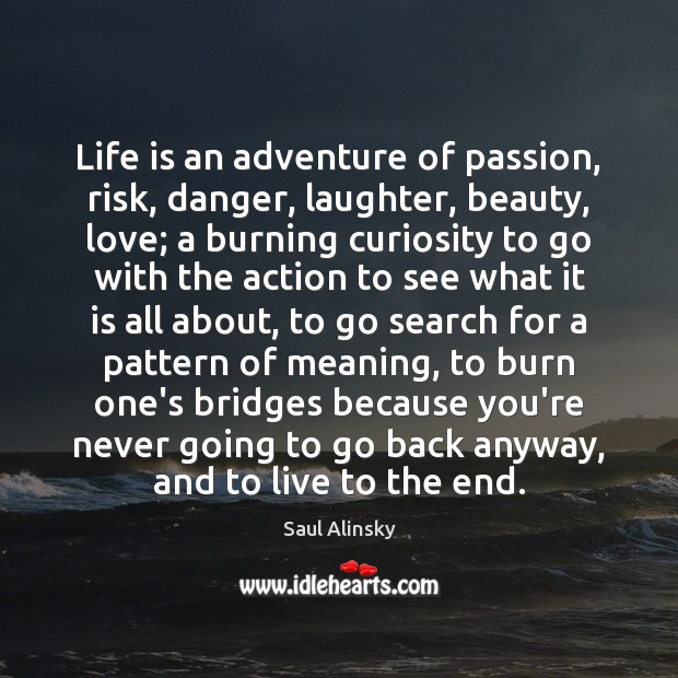Life is an adventure of passion, risk, danger, laughter, beauty, love; a Image