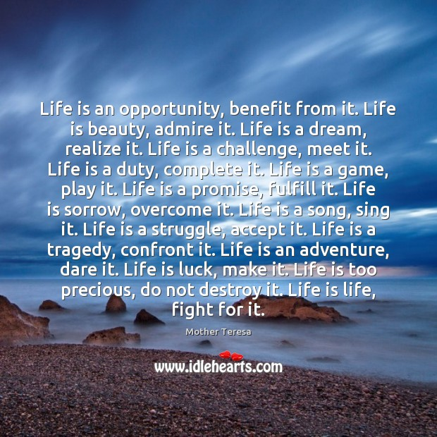 Life is an opportunity, benefit from it. Life is beauty, admire it. Image