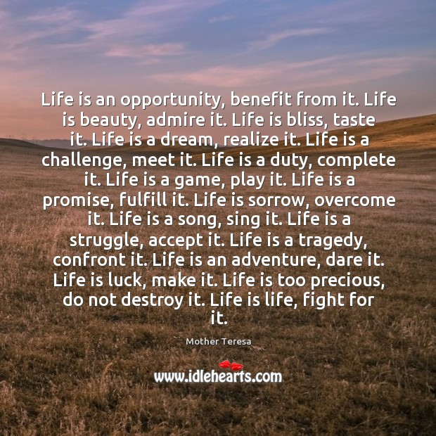 Life Is An Opportunity Benefit From It