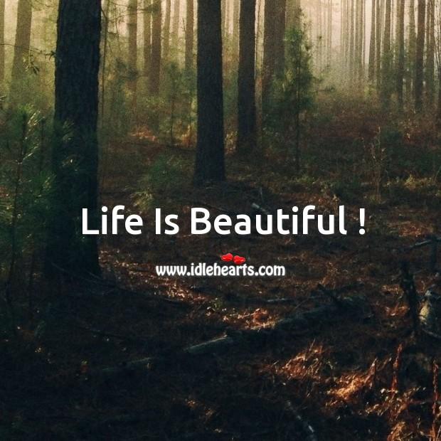 Image, Life is beautiful !
