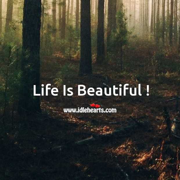 Life is beautiful ! Life is Beautiful Quotes Image