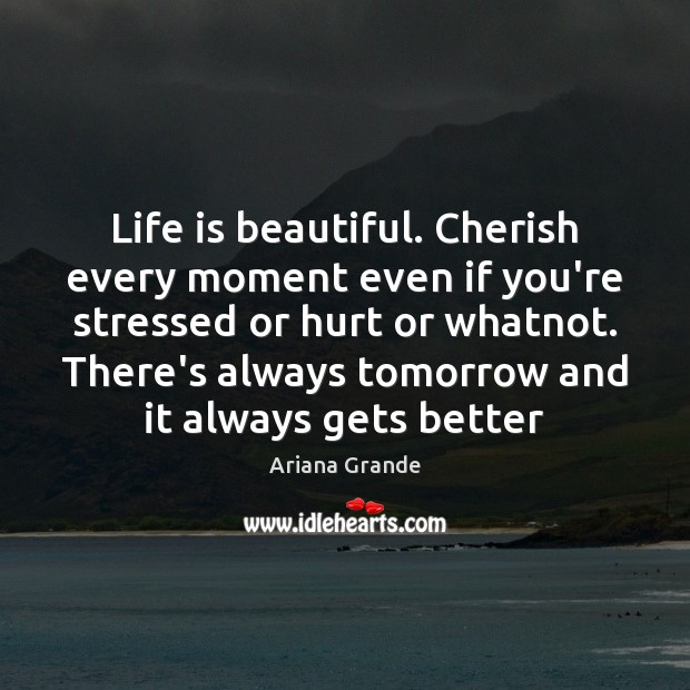 Life is beautiful. Cherish every moment even if you're stressed or hurt Life is Beautiful Quotes Image