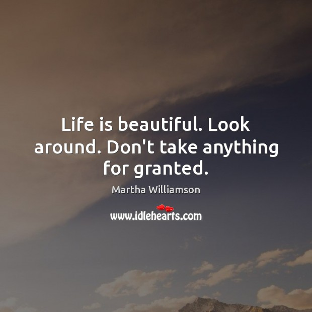 Life is beautiful. Look around. Don't take anything for granted. Life is Beautiful Quotes Image