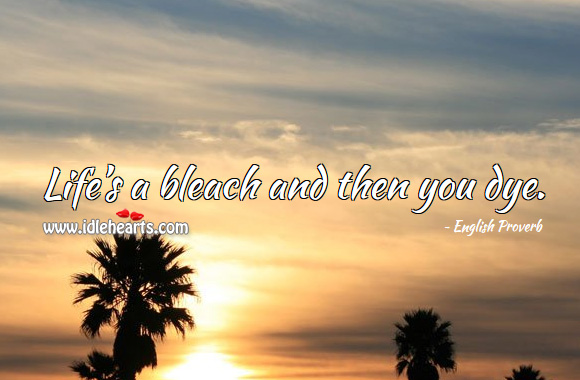 Life's a bleach and then you dye. English Proverbs Image