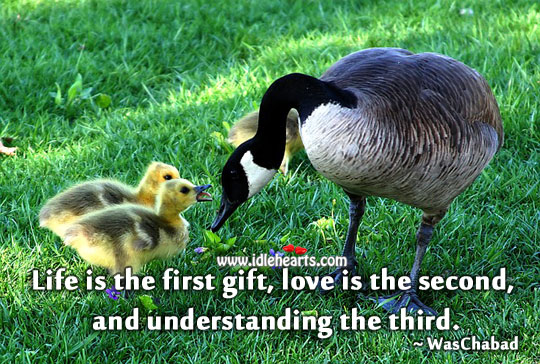 Life is the first gift Understanding Quotes Image