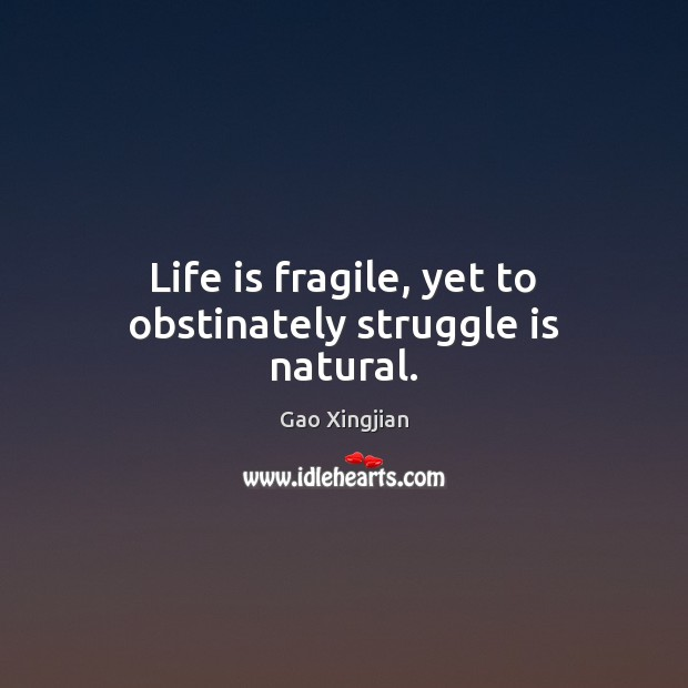 Life is fragile, yet to obstinately struggle is natural. Struggle Quotes Image
