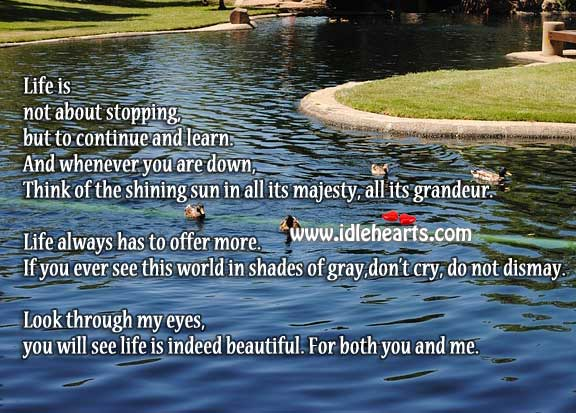 Look through my eyes… Life is beautiful Life is Beautiful Quotes Image