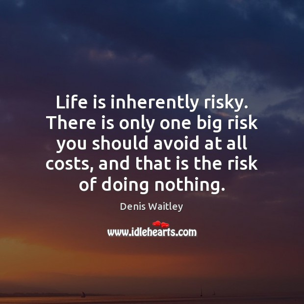 Life is inherently risky. There is only one big risk you should Denis Waitley Picture Quote