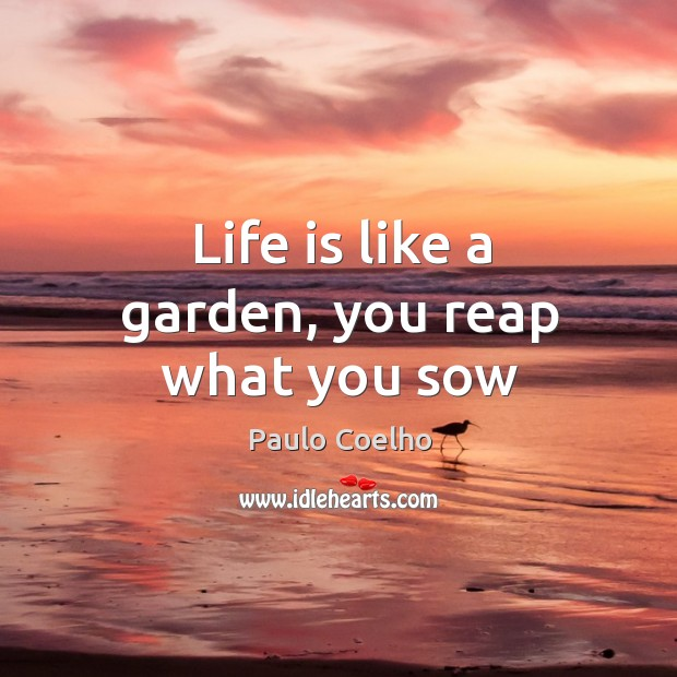 Life is like a garden, you reap what you sow Image